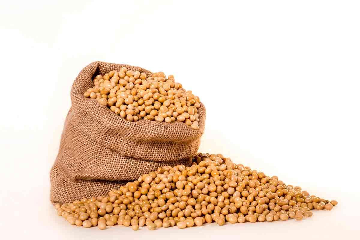 頭陀袋に入った大豆