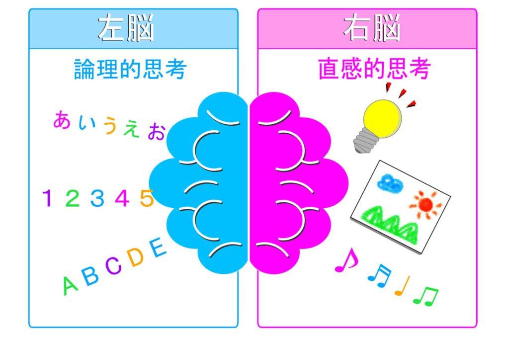 右脳と左脳の役割のイラスト