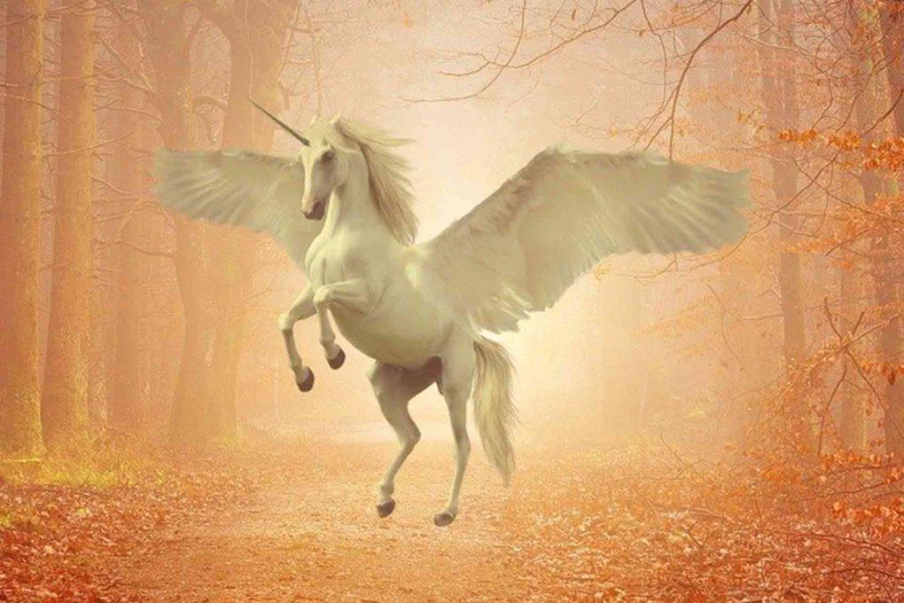 有翼のユニコーンのイメージ