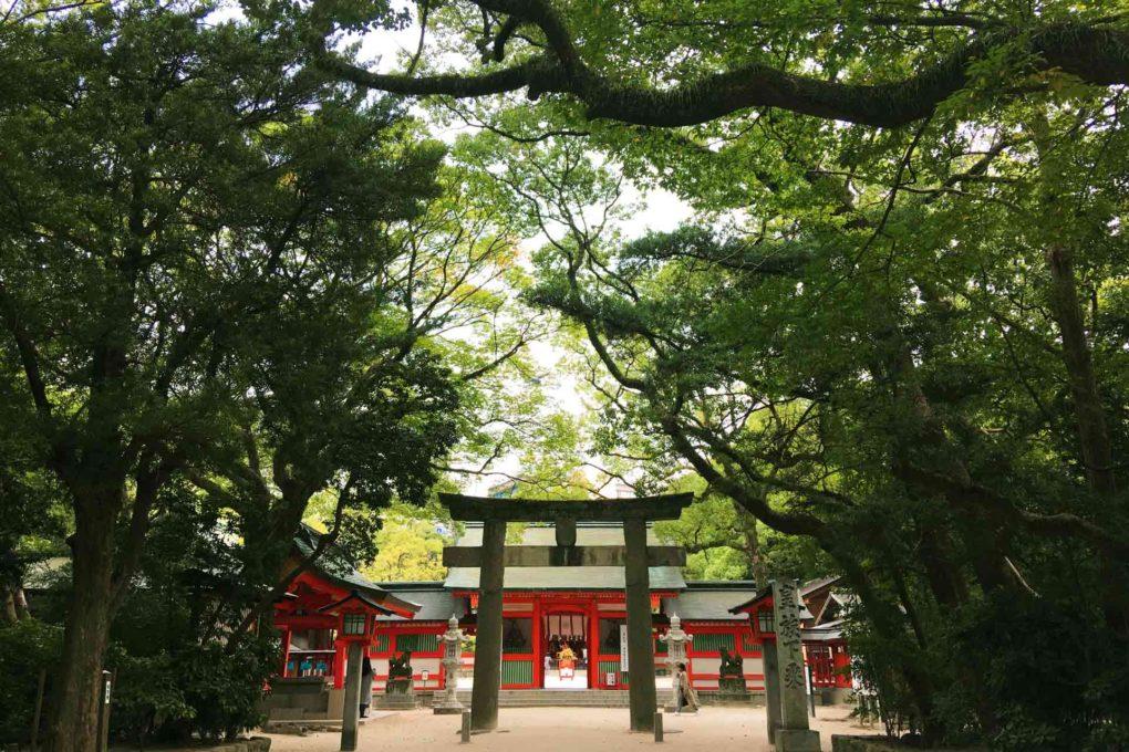 鳥居と神社