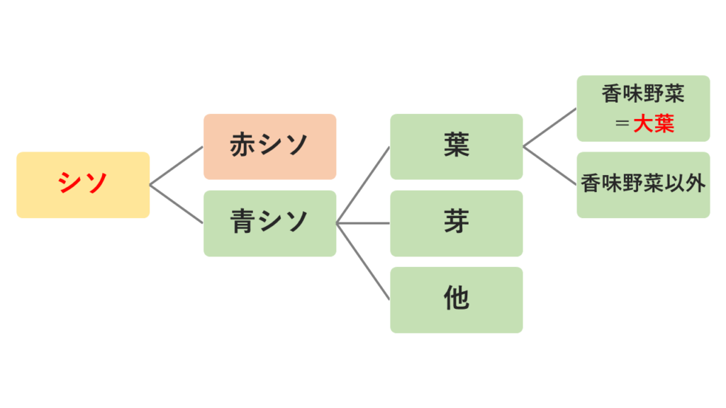 シソと大葉の関係図