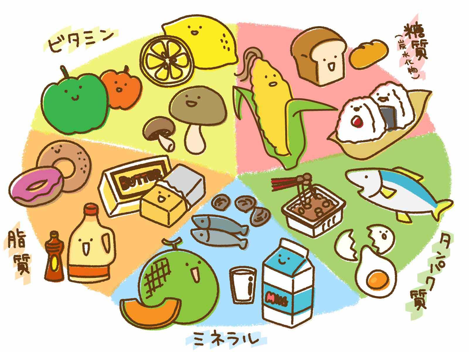 五大栄養素のイメージ