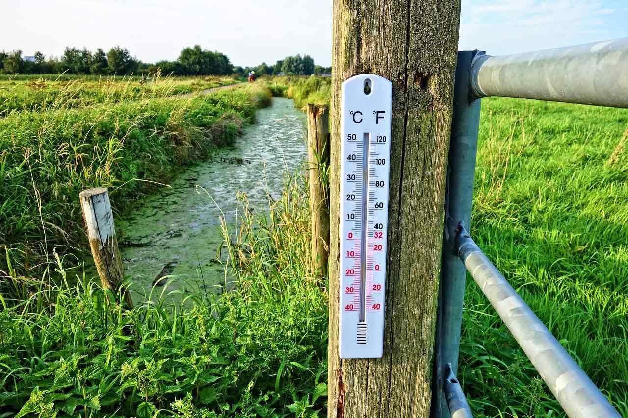 摂氏と華氏の温度計