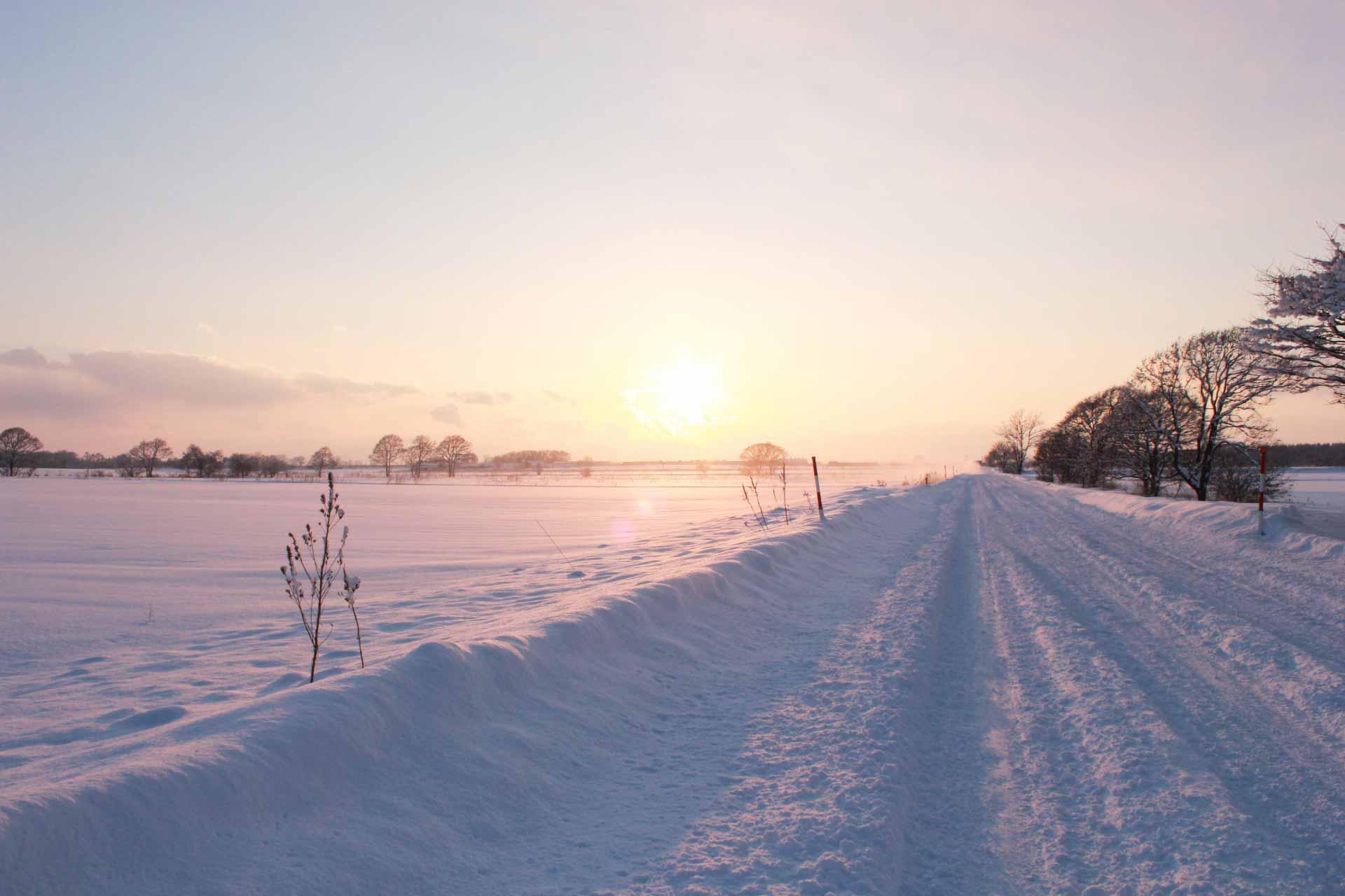 圧雪のイメージ