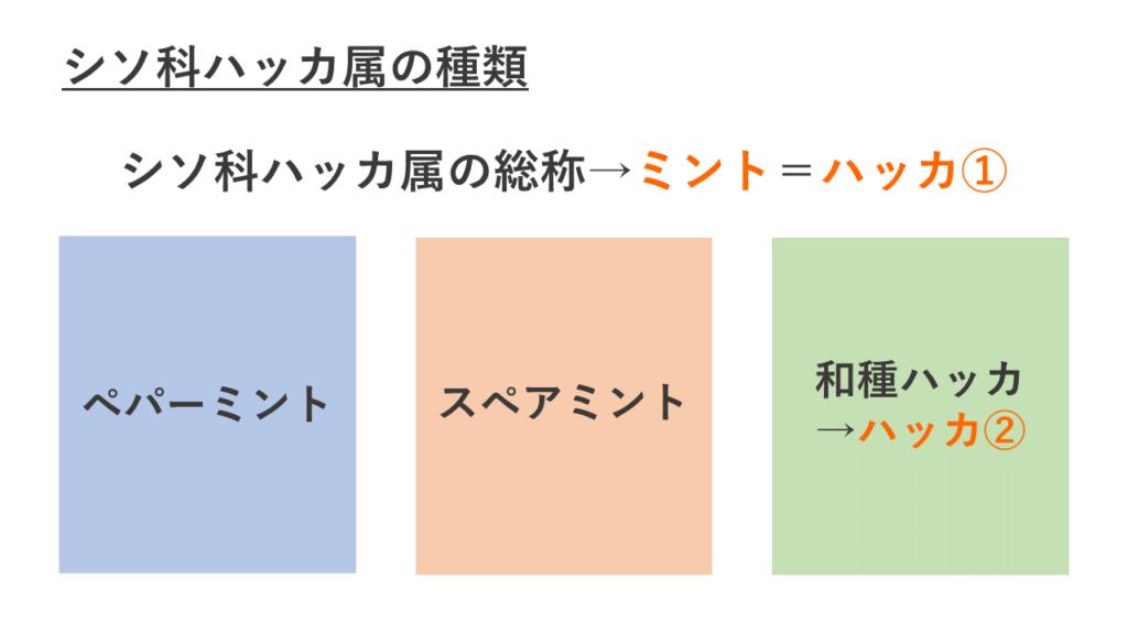 ミント3種類の関係図